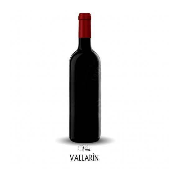 Viña Vallarín (cosechero 14 meses)